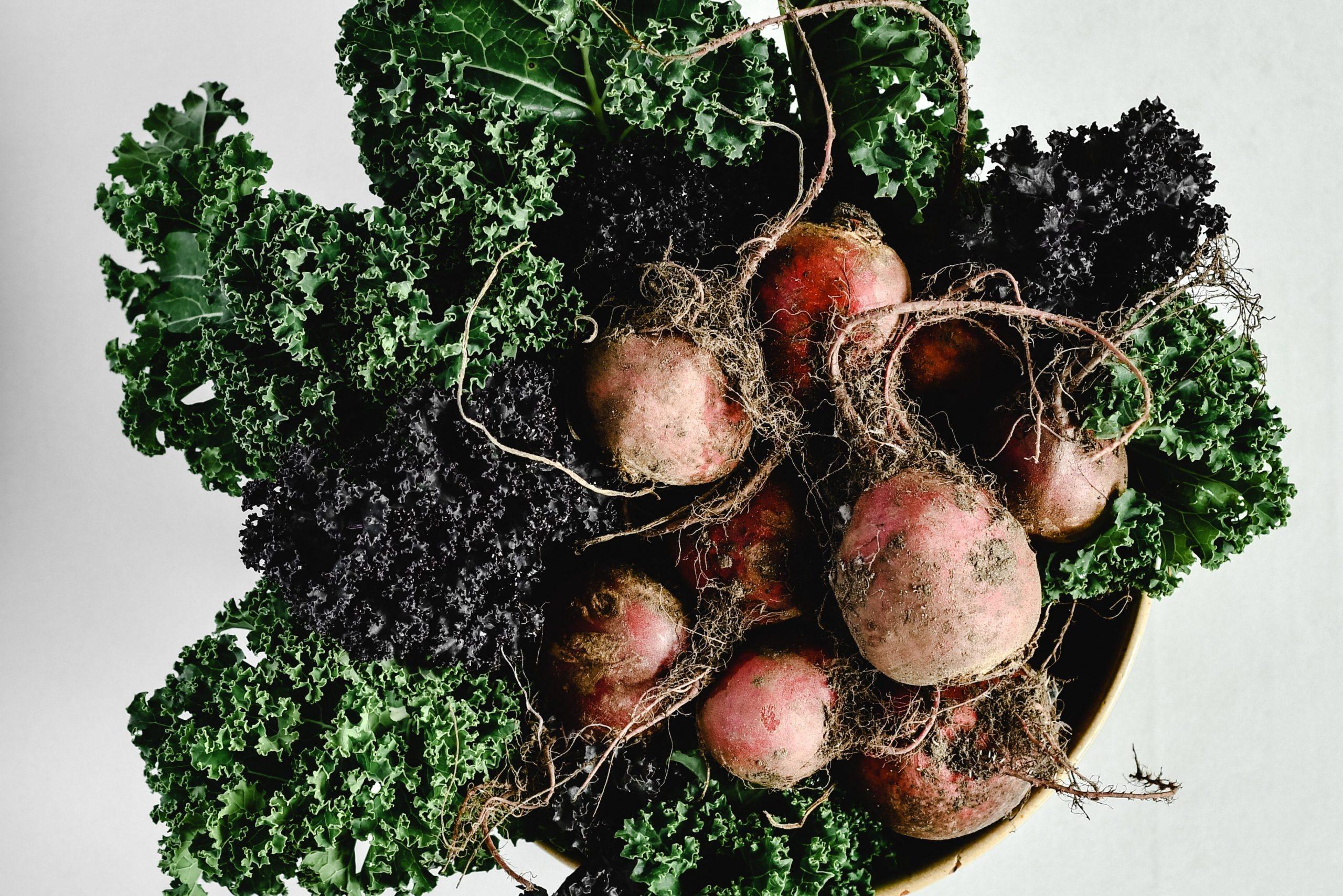root vegetable winter food